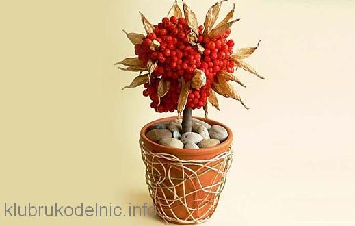 Осень раскрашивает ягода рябины и